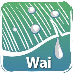 wai_icon